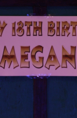 Megan's 18th